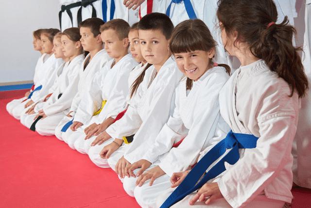Kidsvirtualleader, Summit Martial Arts in Mason City, IA